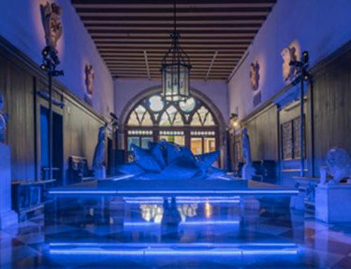 Venezia, scocca l'ora di FreeSpace ed è Biennale di Architettura