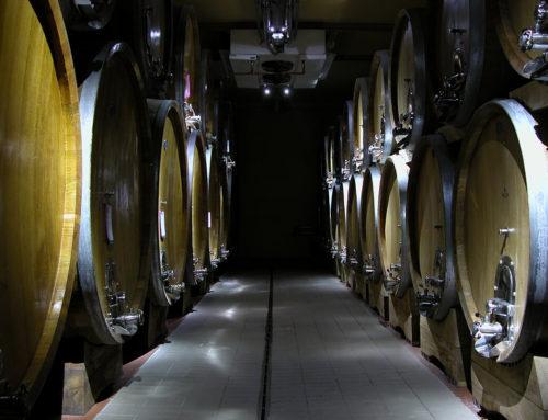 Sartori, l'azienda vitivinicola con oltre cento anni di storia