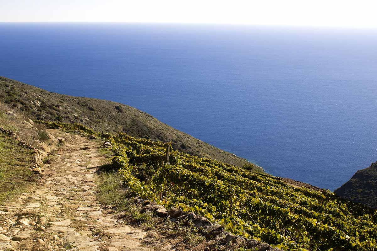 Isola del Giglio Ansonaco Life&People Magazine lifeandpeople.it