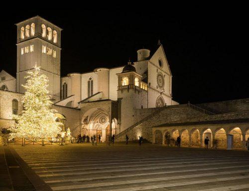 Terzo Paradiso nel Bosco incantato: un Natale e un futuro sempre più green