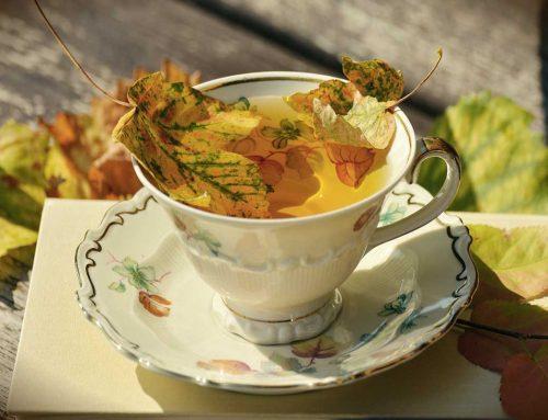 Il rituale del tè nel mondo: viaggio tra suggestive preparazioni e millenarie tradizioni