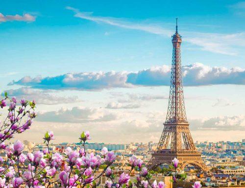 Parigi: il viaggio virtuale nei meravigliosi musei della Ville Lumière