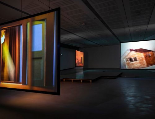 Arte contemporanea: assegnato il Maxxi Bulgari Prize 2020