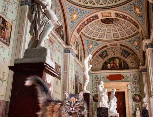 I gatti nell'arte: dall'antico Egitto ai giorni nostri