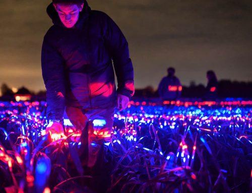 L'arte incontra la scienza: Grow, il campo di luci di Daan Roosegaarde