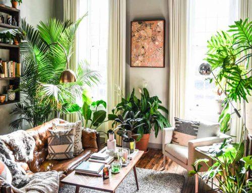 Come arredare casa in stile urban jungle