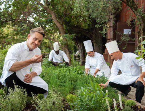 La svolta green: gli chef stellati coltivano il loro orto